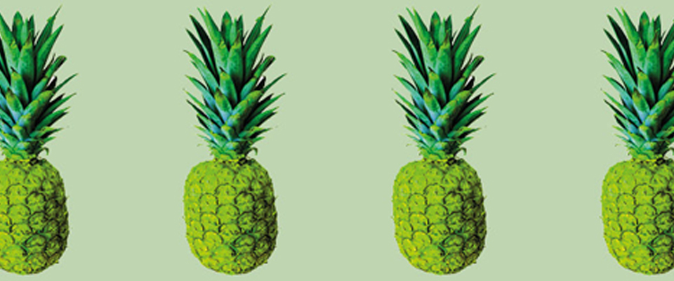 HeaderANANAS
